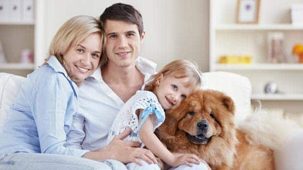 Wills & Trusts dog-young-family Direct Wills Upton Park
